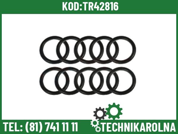 831452M1 Zestaw O-ringów