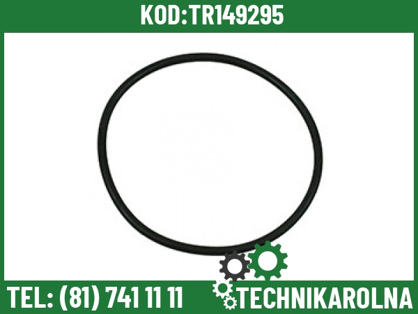 181138A1 O-ring