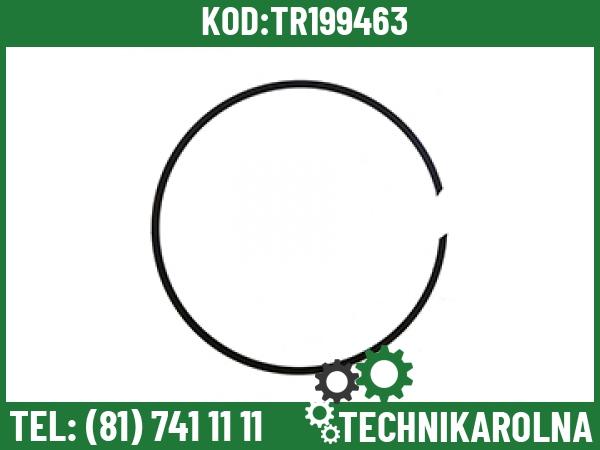Z101768 Pierścień(18)